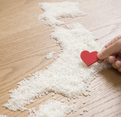 Rice in the shape of Japan